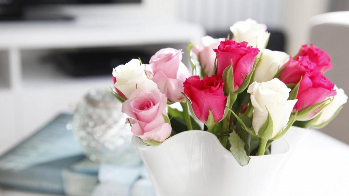 Что делать, чтобы розы дольше стояли: как сохранить розы в 21