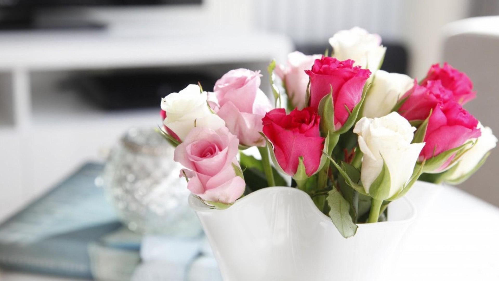 бело-розовые цветы с названиями и фото