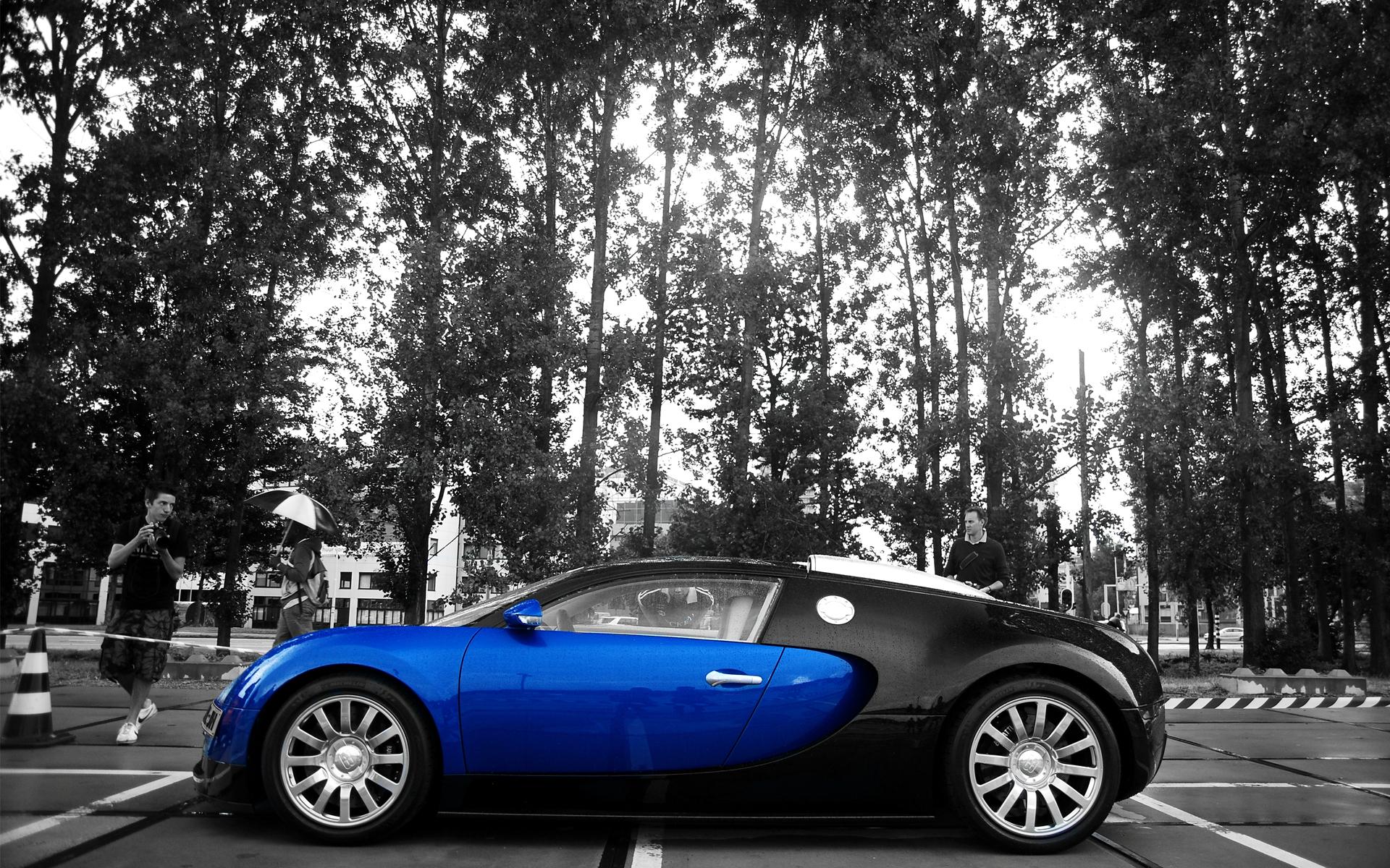Bugatti black  № 2413119 загрузить