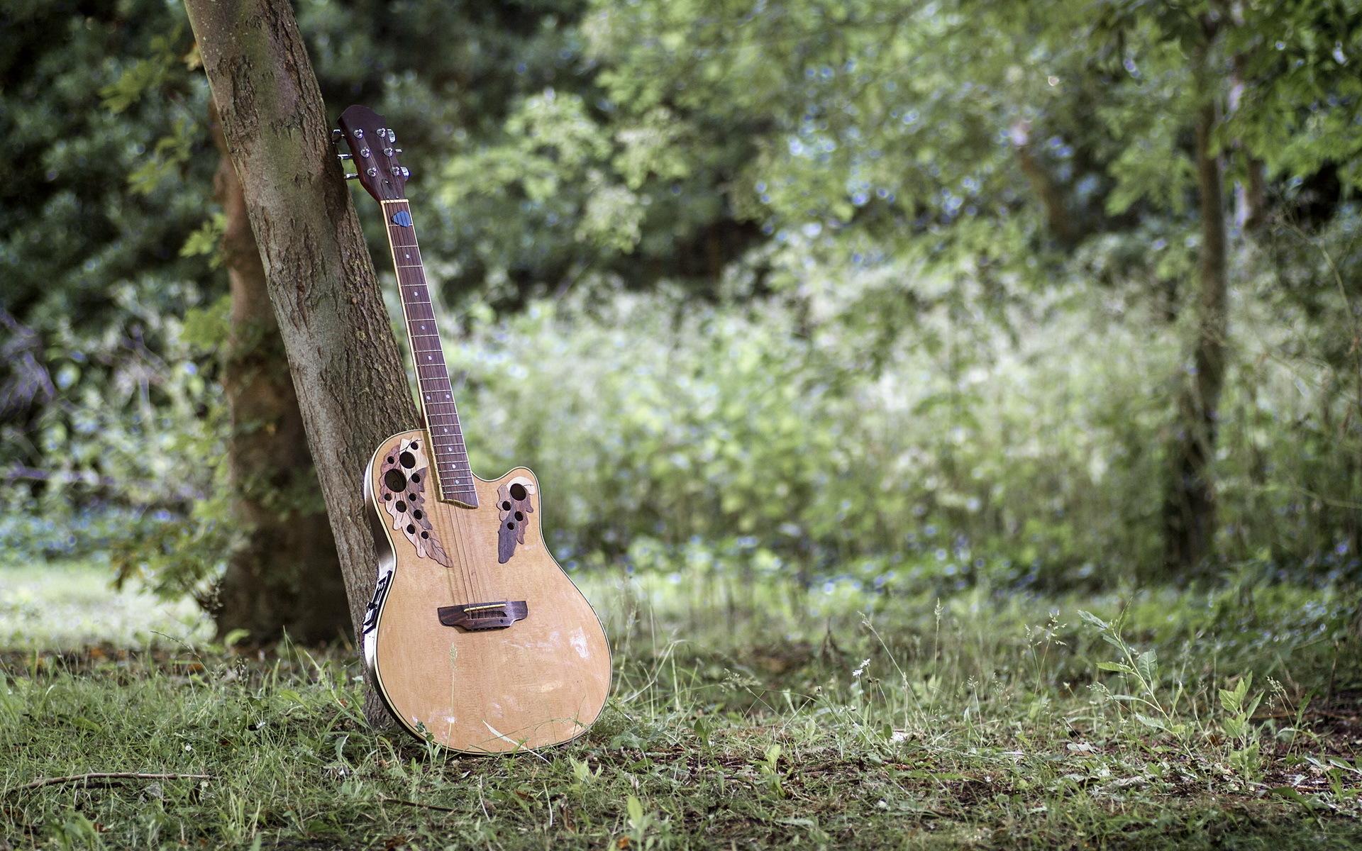 парень гитара мужчина природа дерево  № 3470142 бесплатно