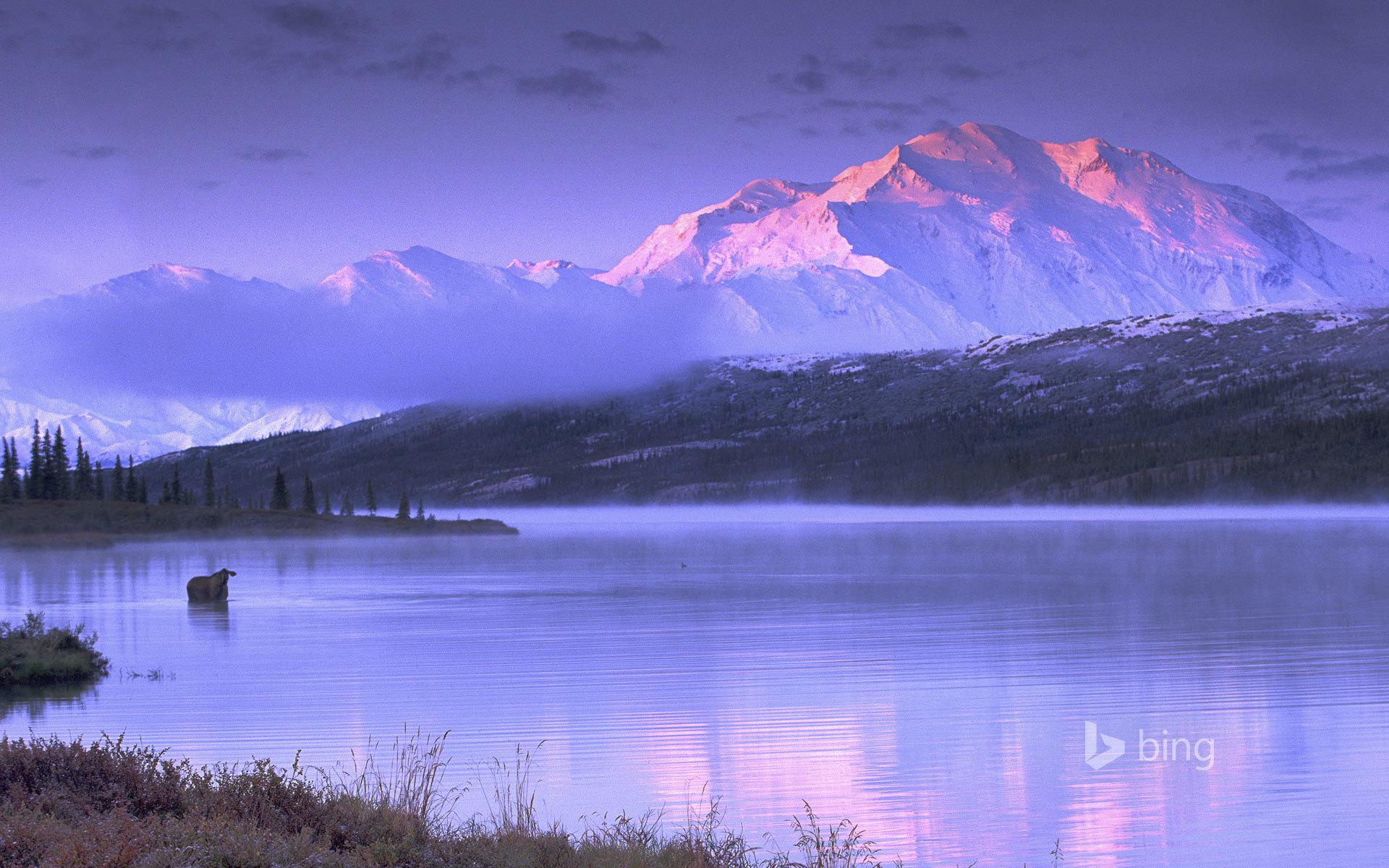 Alsek River Valley, Alaska  № 2454898 загрузить