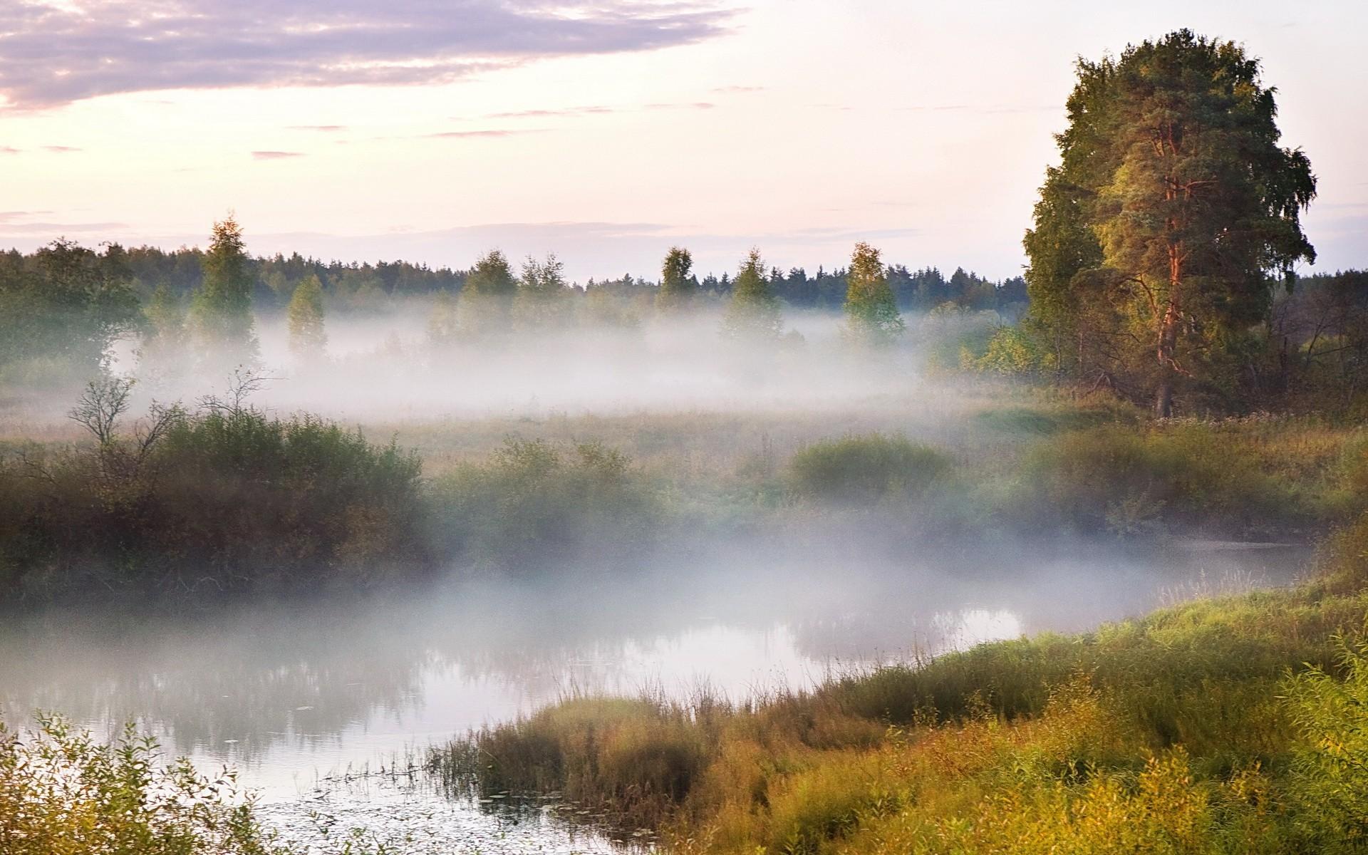 Туман вдоль реки  № 1281383 загрузить