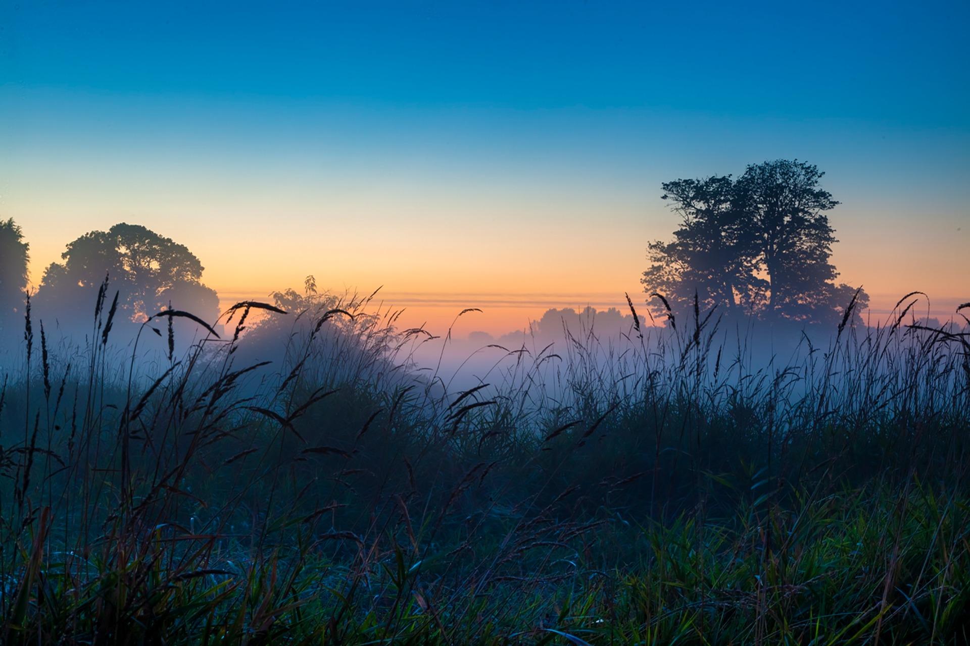 Рассвет утренний туман  № 3795985 без смс