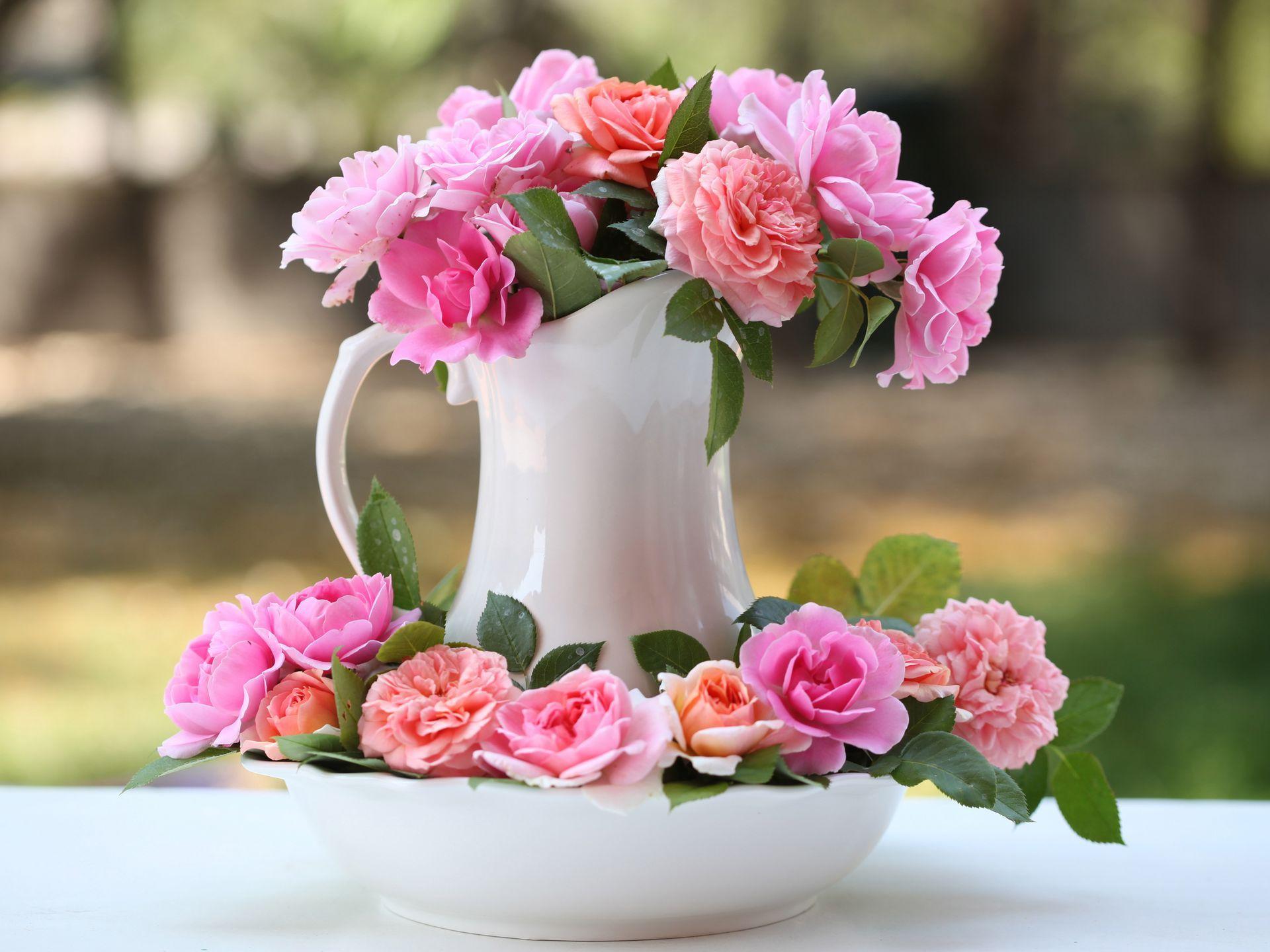 розы цветы ваза  № 1332588 загрузить