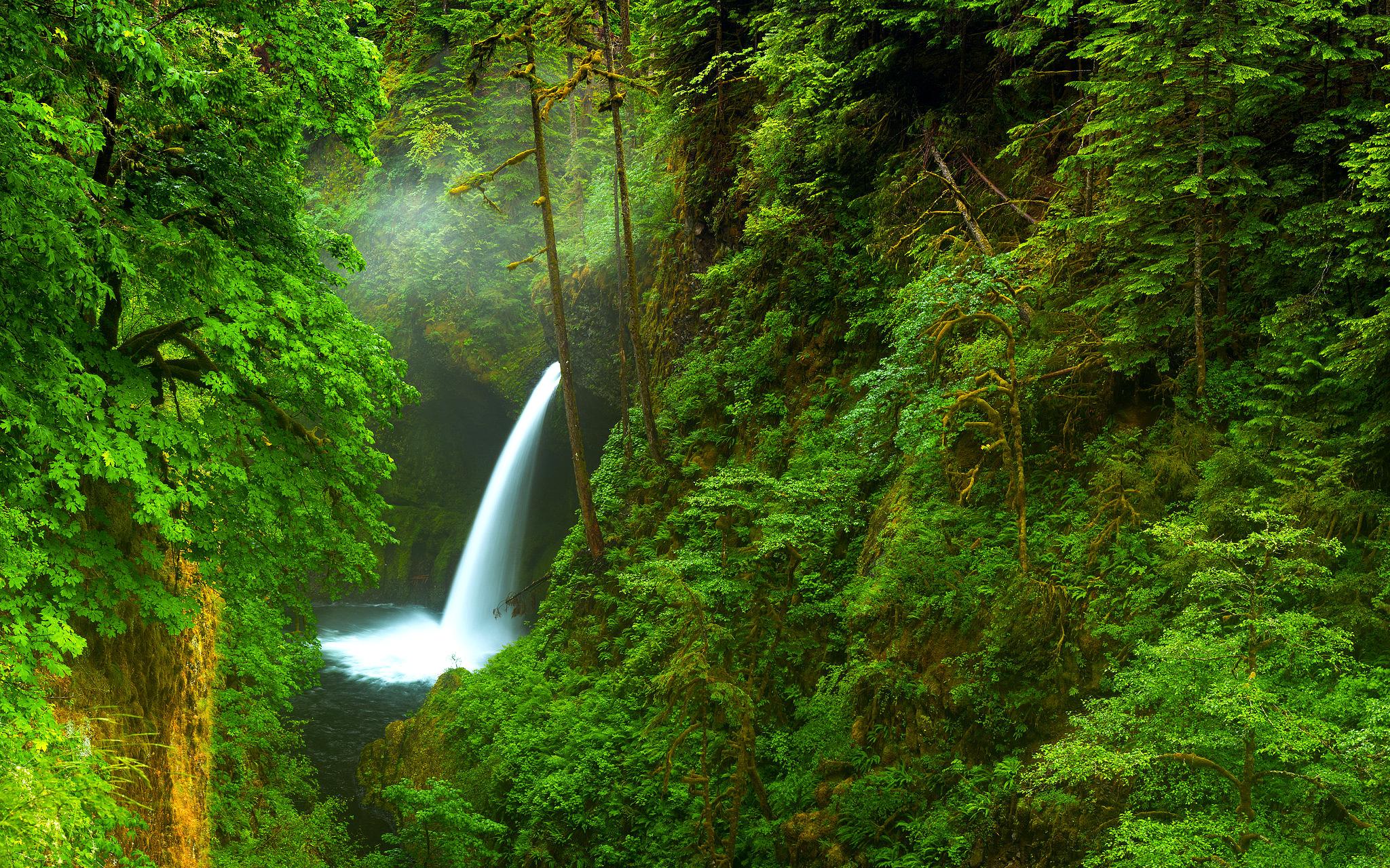 природа река водопад лес деревья nature river waterfall forest trees  № 484166  скачать