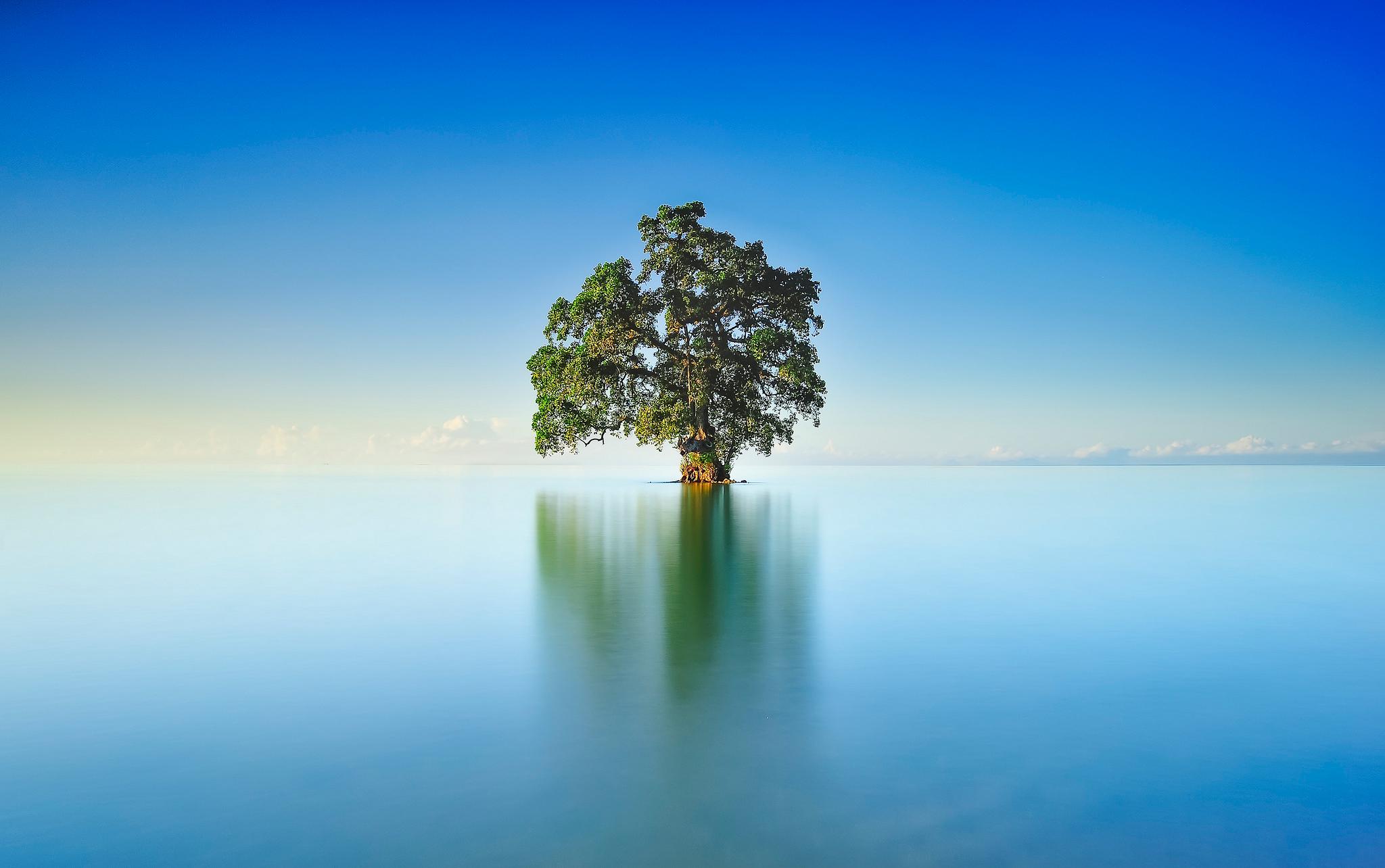 небо, вода, деревья  № 2487102 без смс