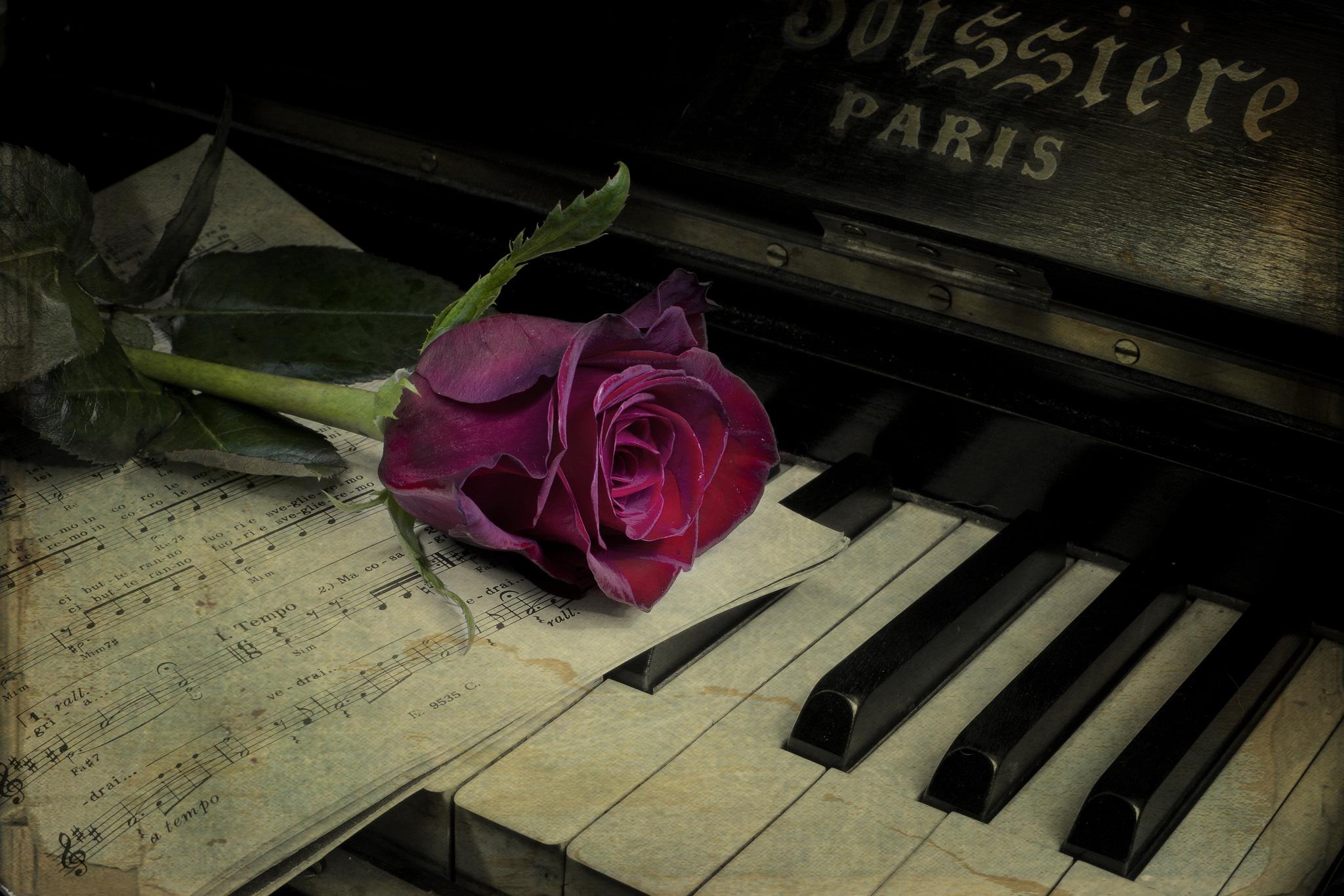 Онлайн открытка музыка