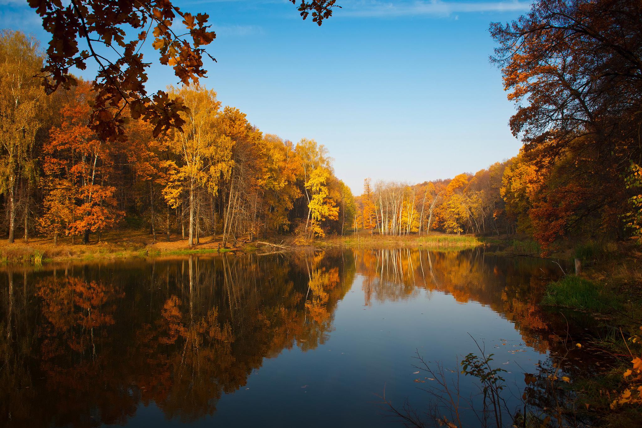 природа озеро деревья небо оссень  № 2535957 загрузить