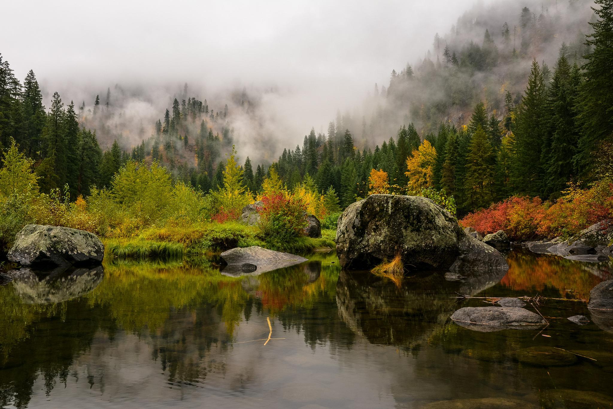 горы отражение лес туман  № 2832549 бесплатно