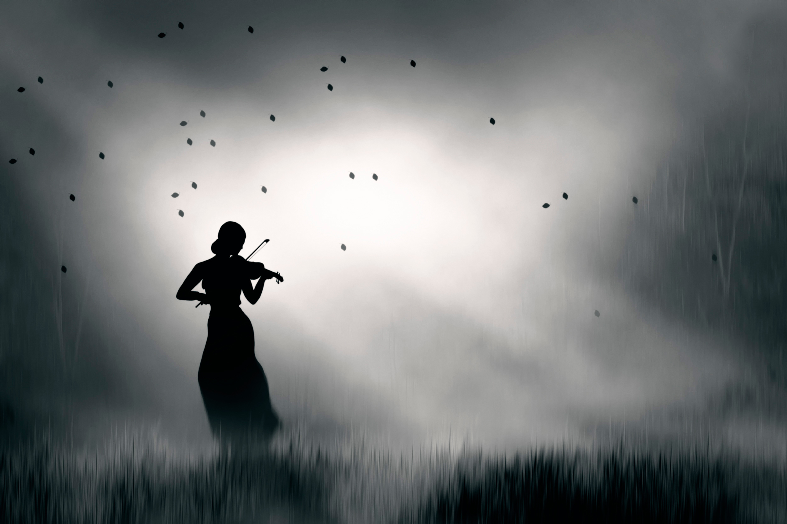 Download Wallpaper Silhouette Violinist I Play My Lonely Song Section Music In Resolution 2500x1667