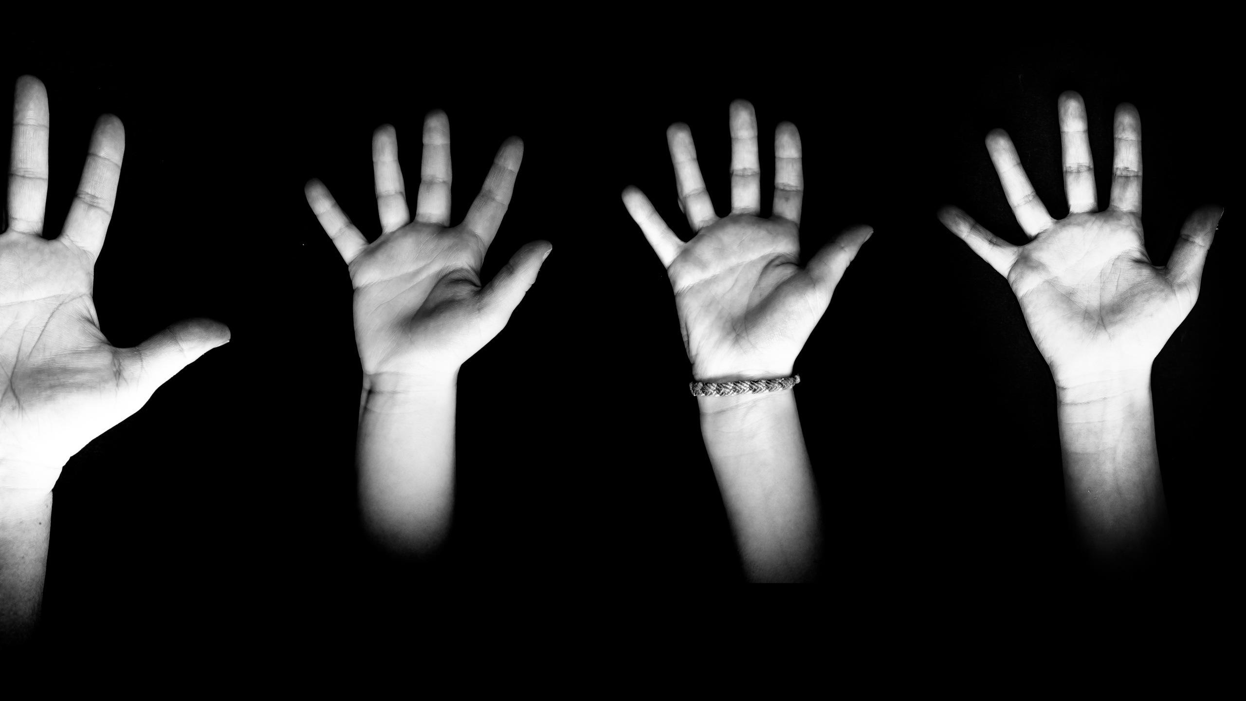 Hand-shadow guide (vdo) 622a  56fe(2)
