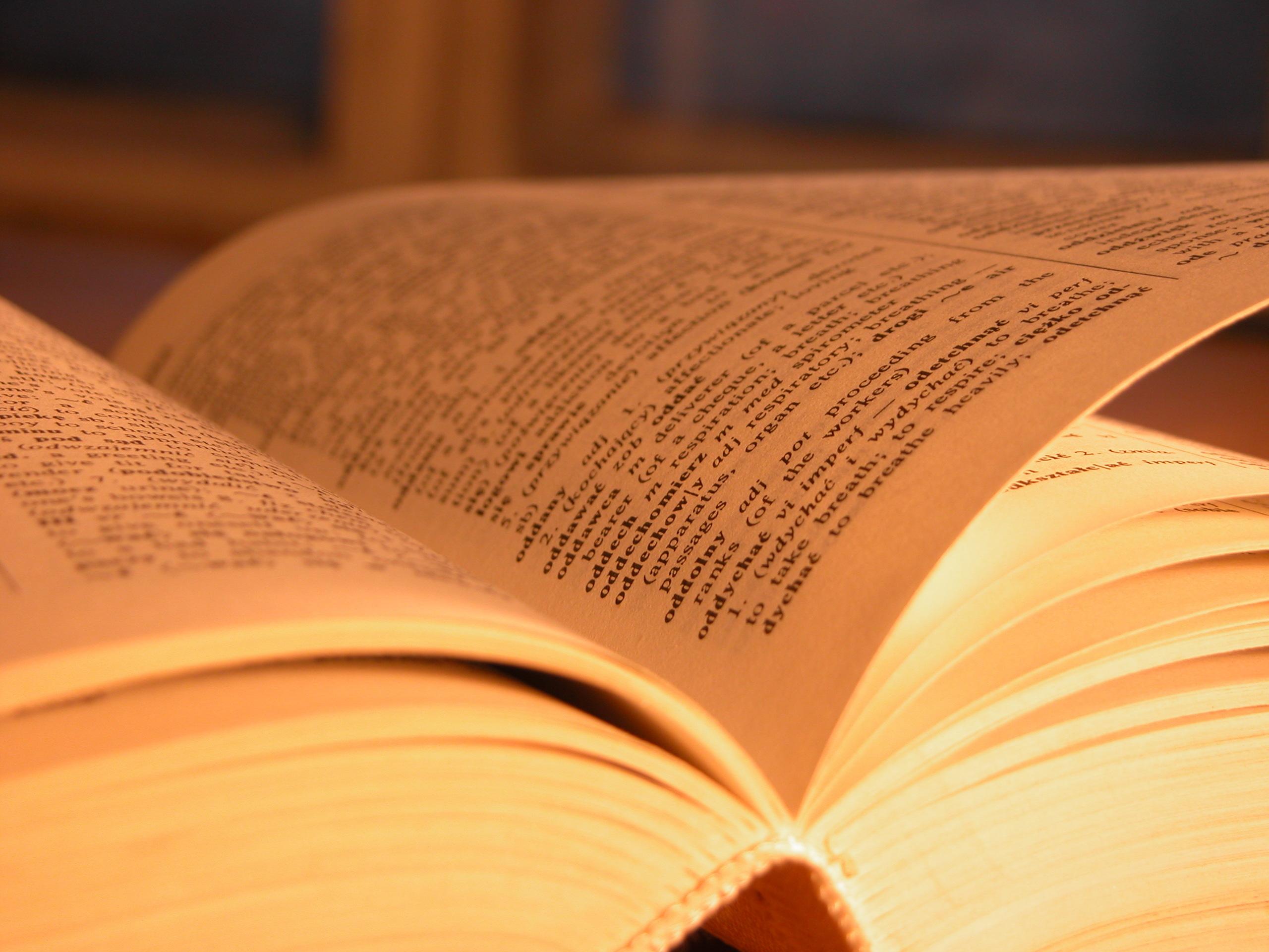 книга слова макро book words macro  № 1998320 без смс