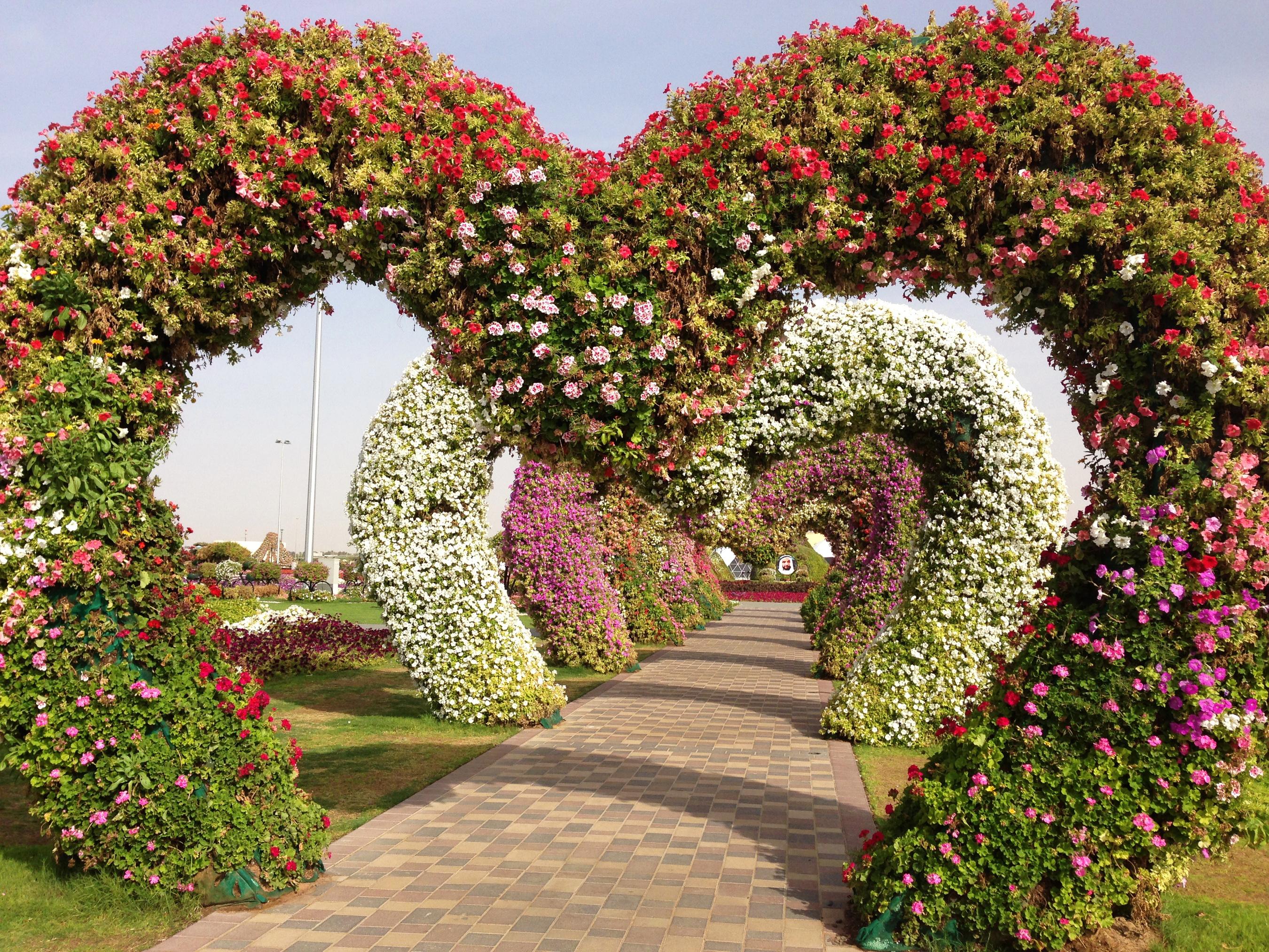 Найти картинки природа цветочные арки в саду 7