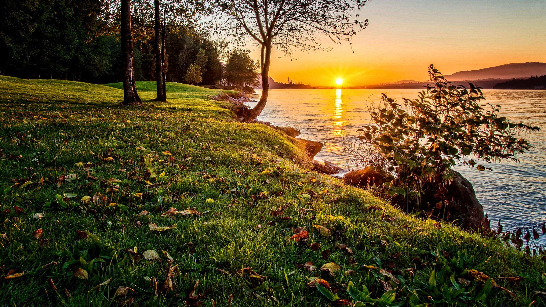 закат озеро осень трава  № 1020795 без смс