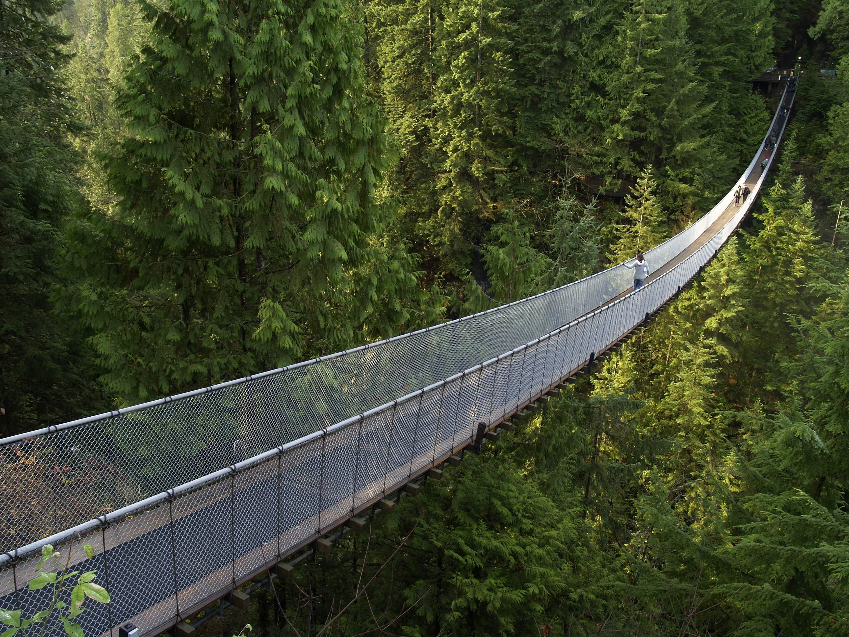 Мост через речку в ущелье  № 2239444  скачать