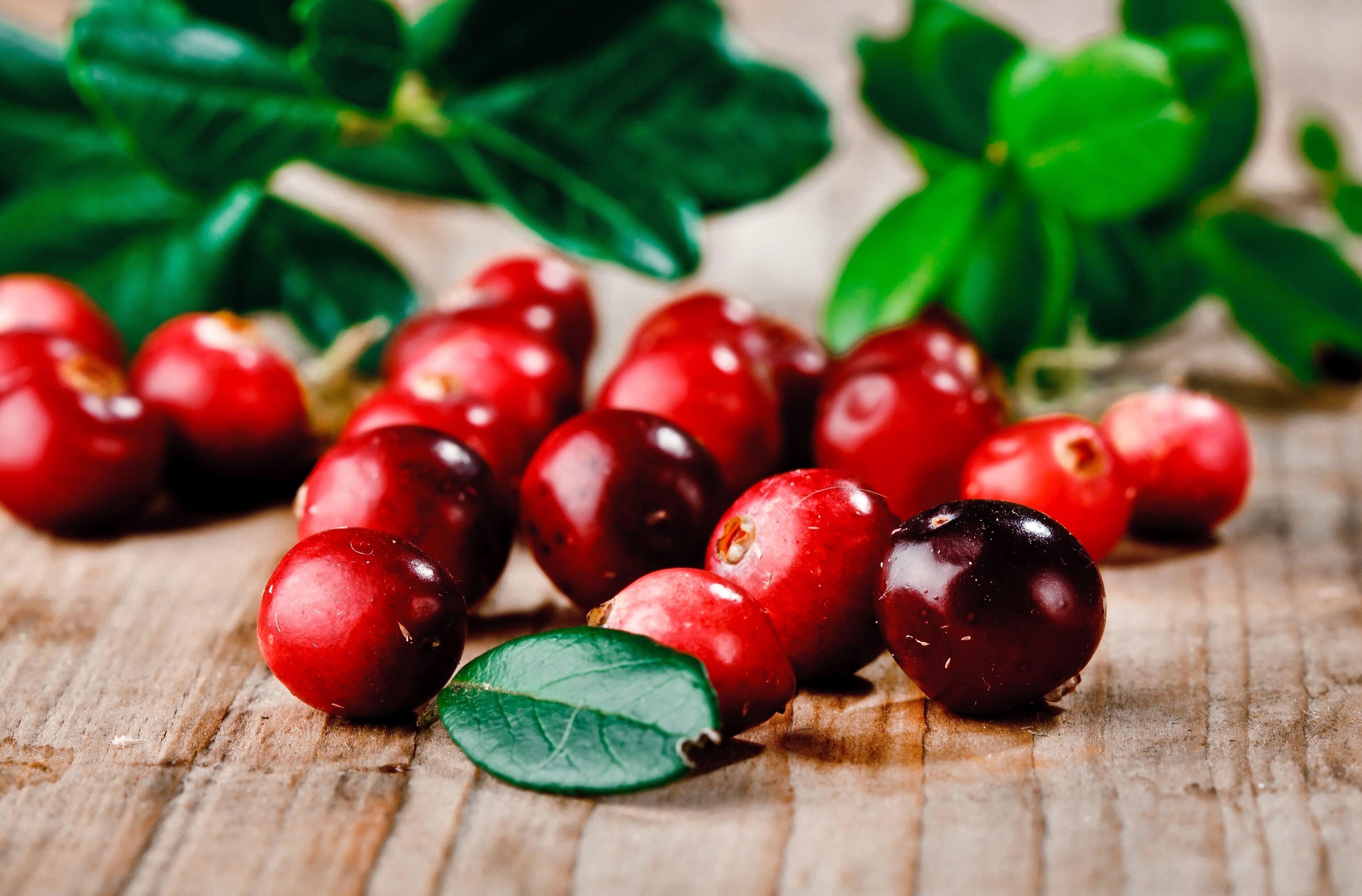 брусника ягода ведро  № 3697082 бесплатно