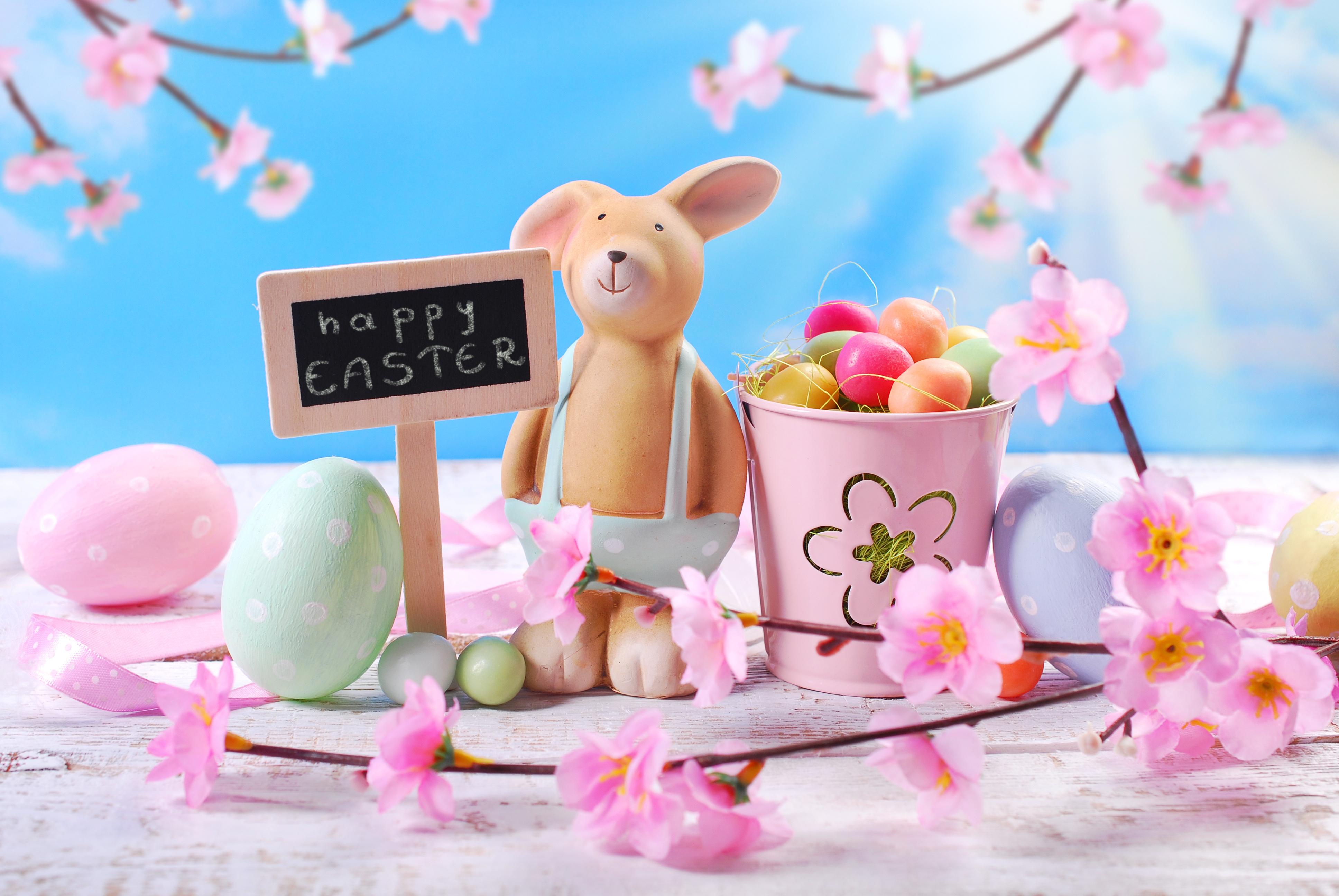 природа кролик цветы тюльпаны яйца пасха  № 271702  скачать