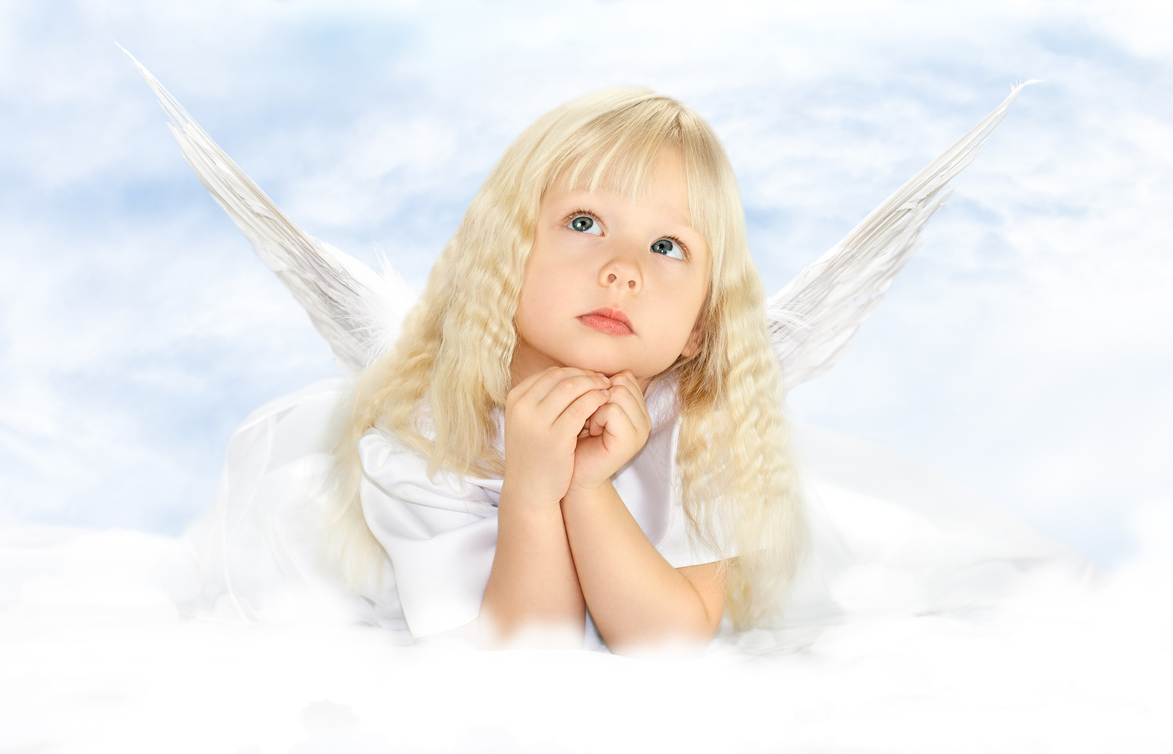 Angel Children  Wwwimgkidcom  The Image Kid Has It. Hp Proliant Dl580 G2 Server Mayo Clinic Acne. Aflac Life Insurance Reviews. Wake Forest University P A Program. Invesco Diversified Dividend Fund. Degree In Sports Administration. What Is A Balance Transfer On A Credit Card. Help Desk Software Packages Pa Schools In Mn. Huntsville Divorce Attorneys Pre Nod Leads