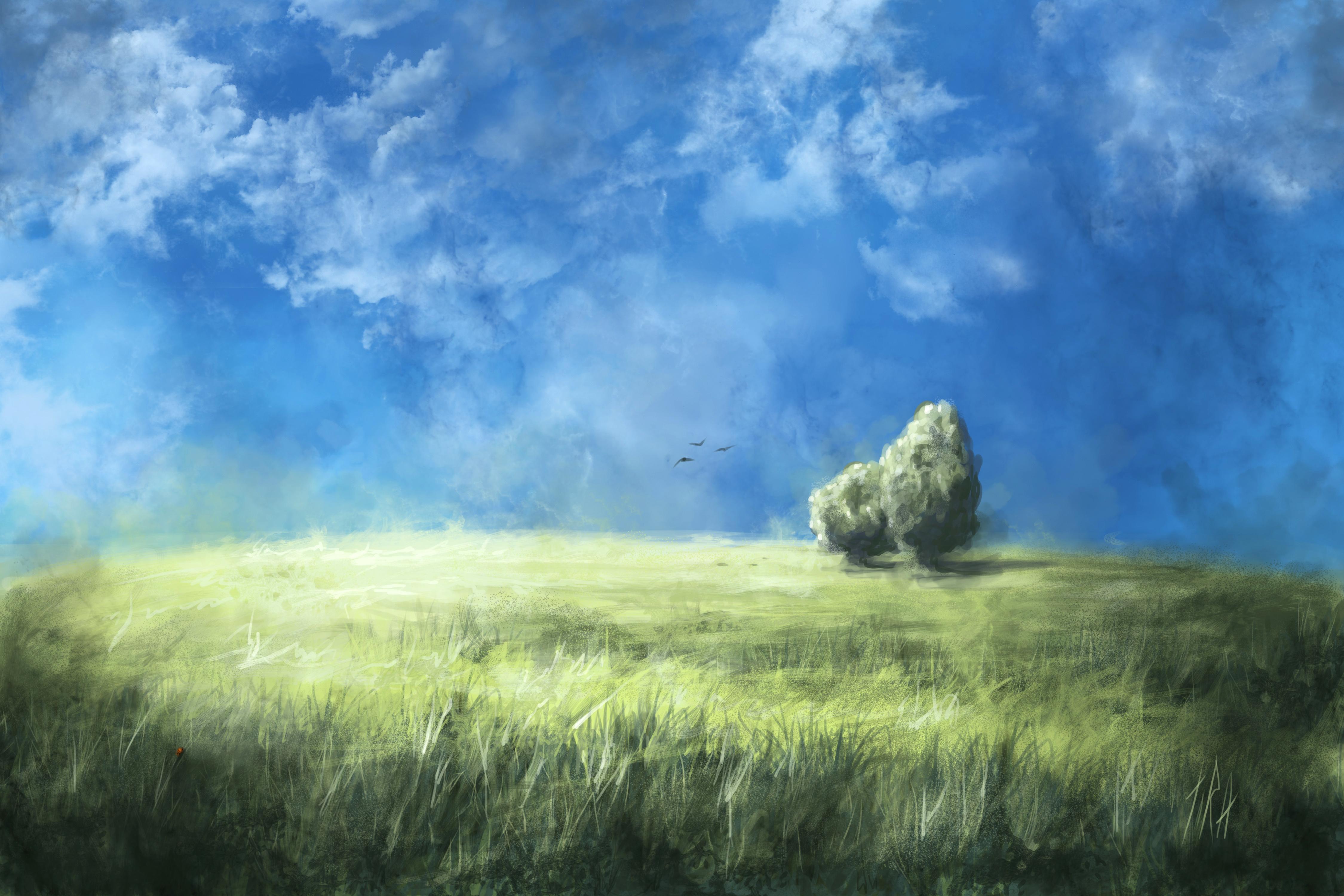 природа небо облака деревья поле nature the sky clouds trees field  № 243700  скачать