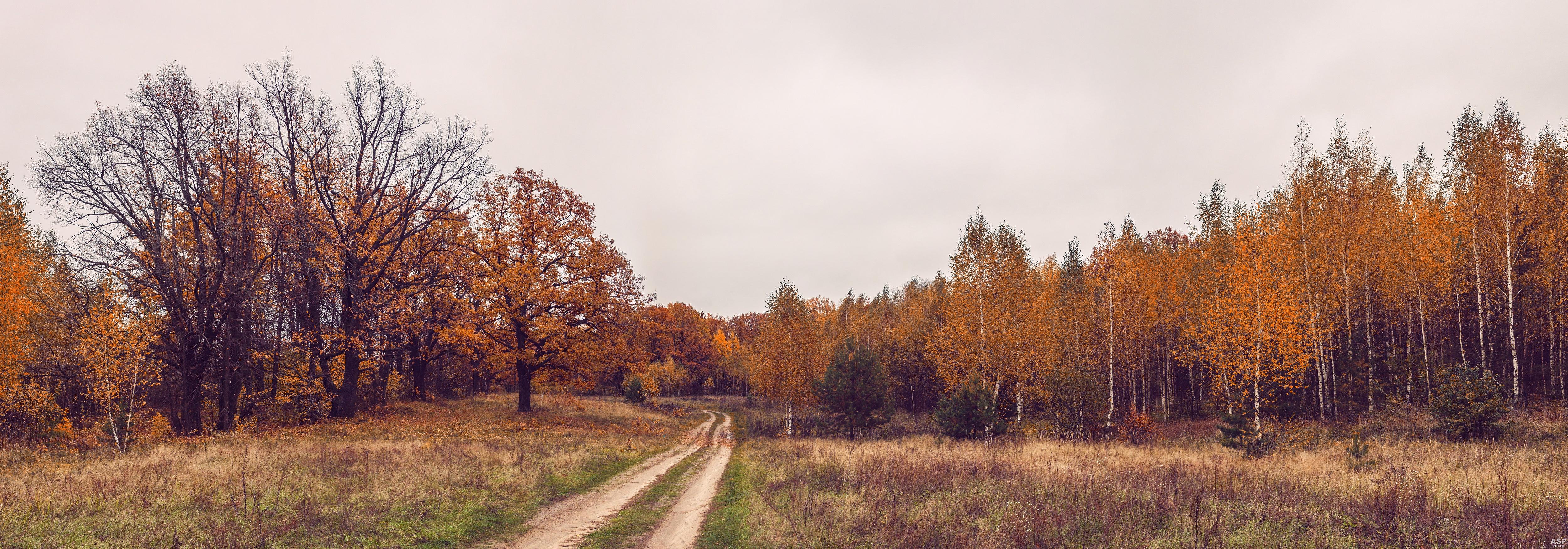 Поле осенью  № 2869701  скачать