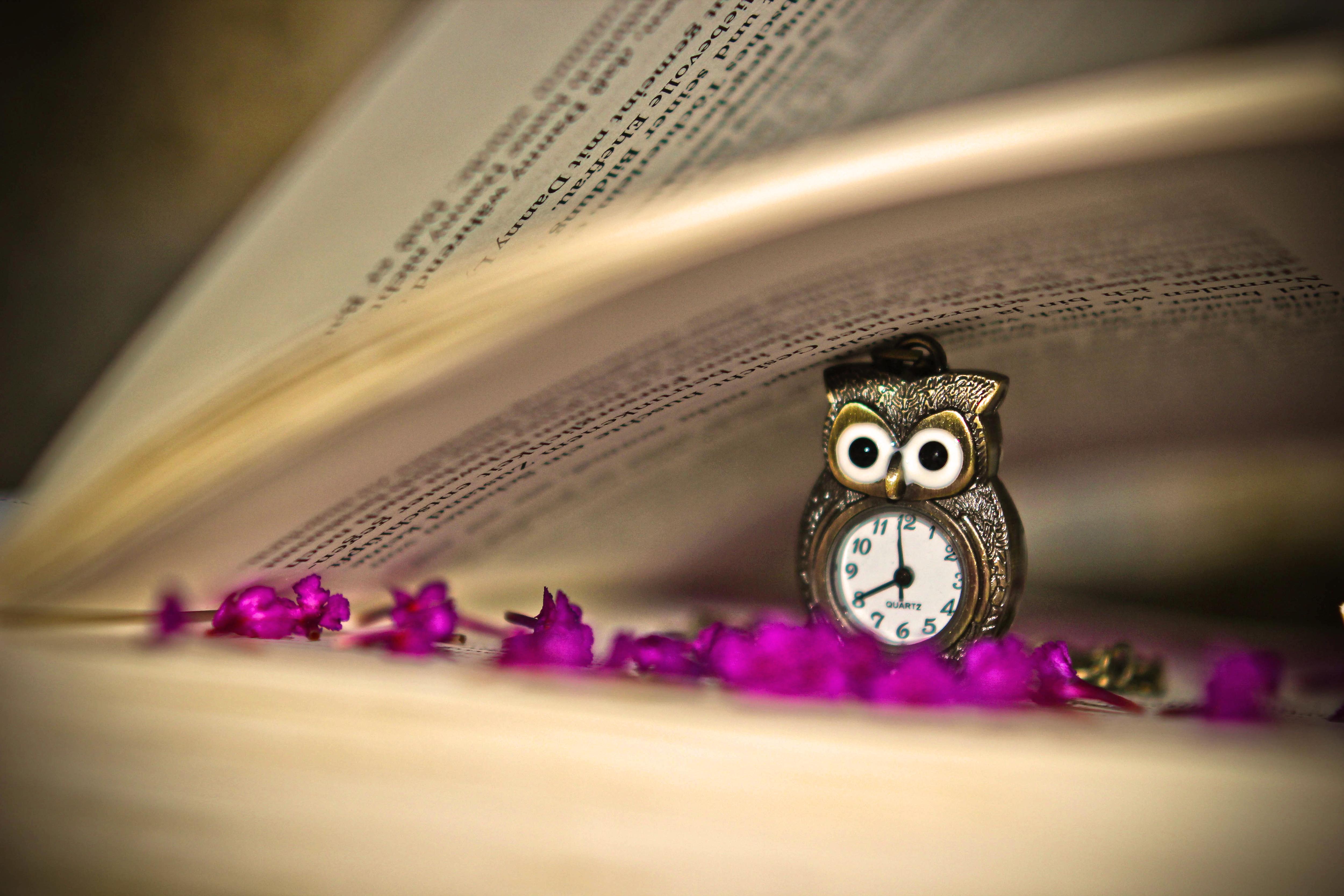 природа цветы часы  № 1520735 бесплатно