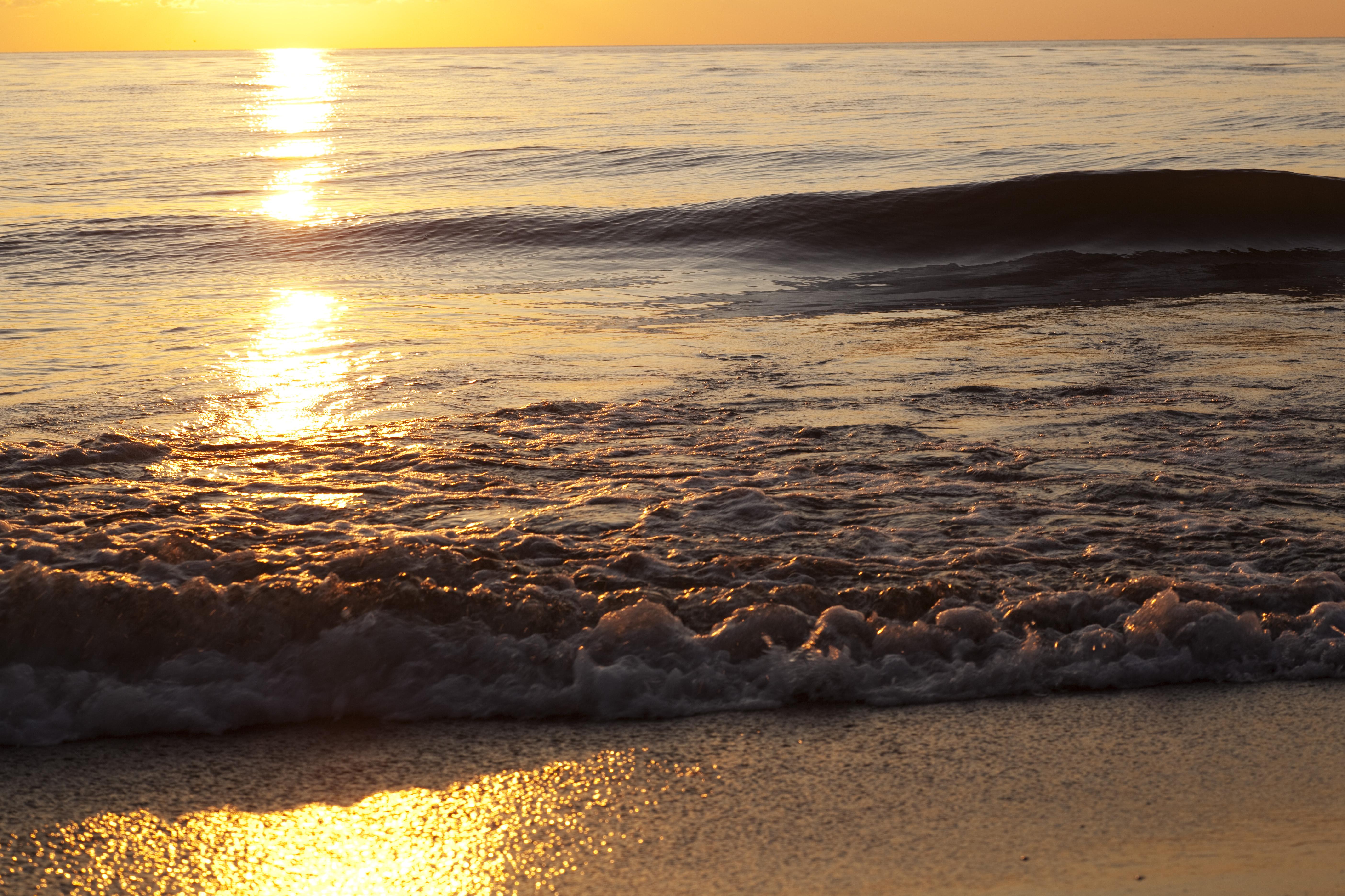 Берег закат песок  № 1209190 без смс