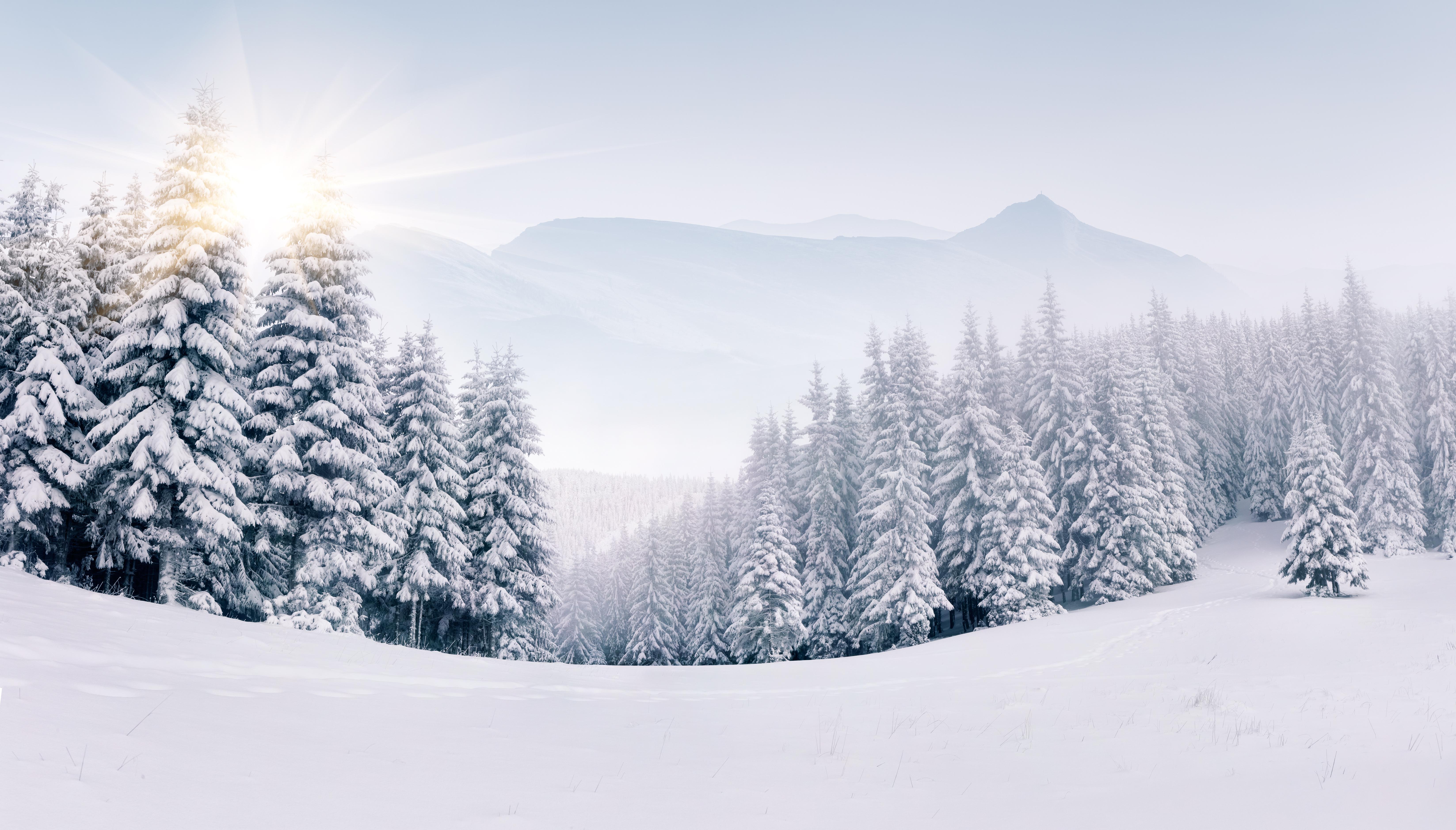 4-Designer | Winter Landscape HD picture material 8