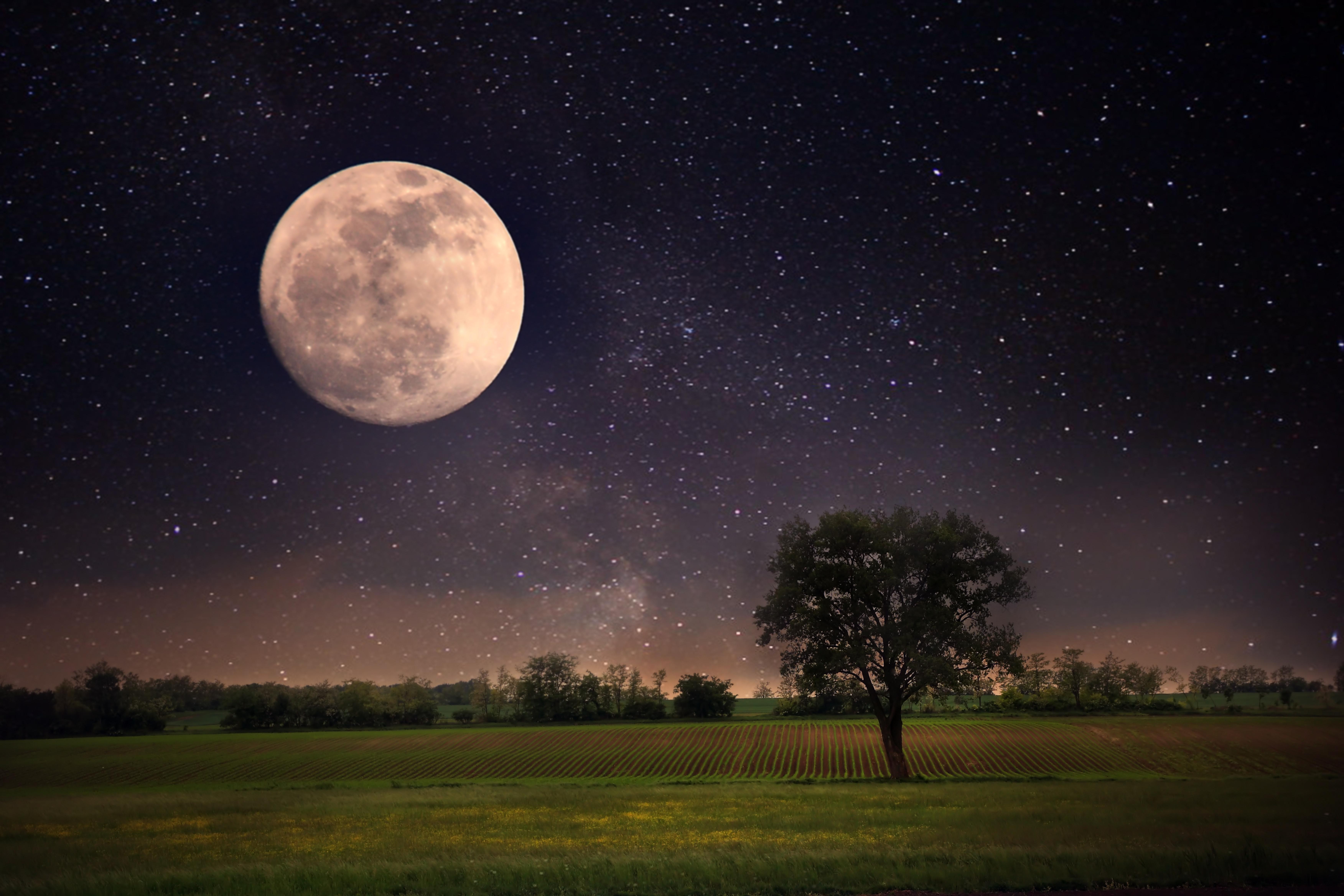 Download Wallpaper The Sky Stars Landscape Night Nature