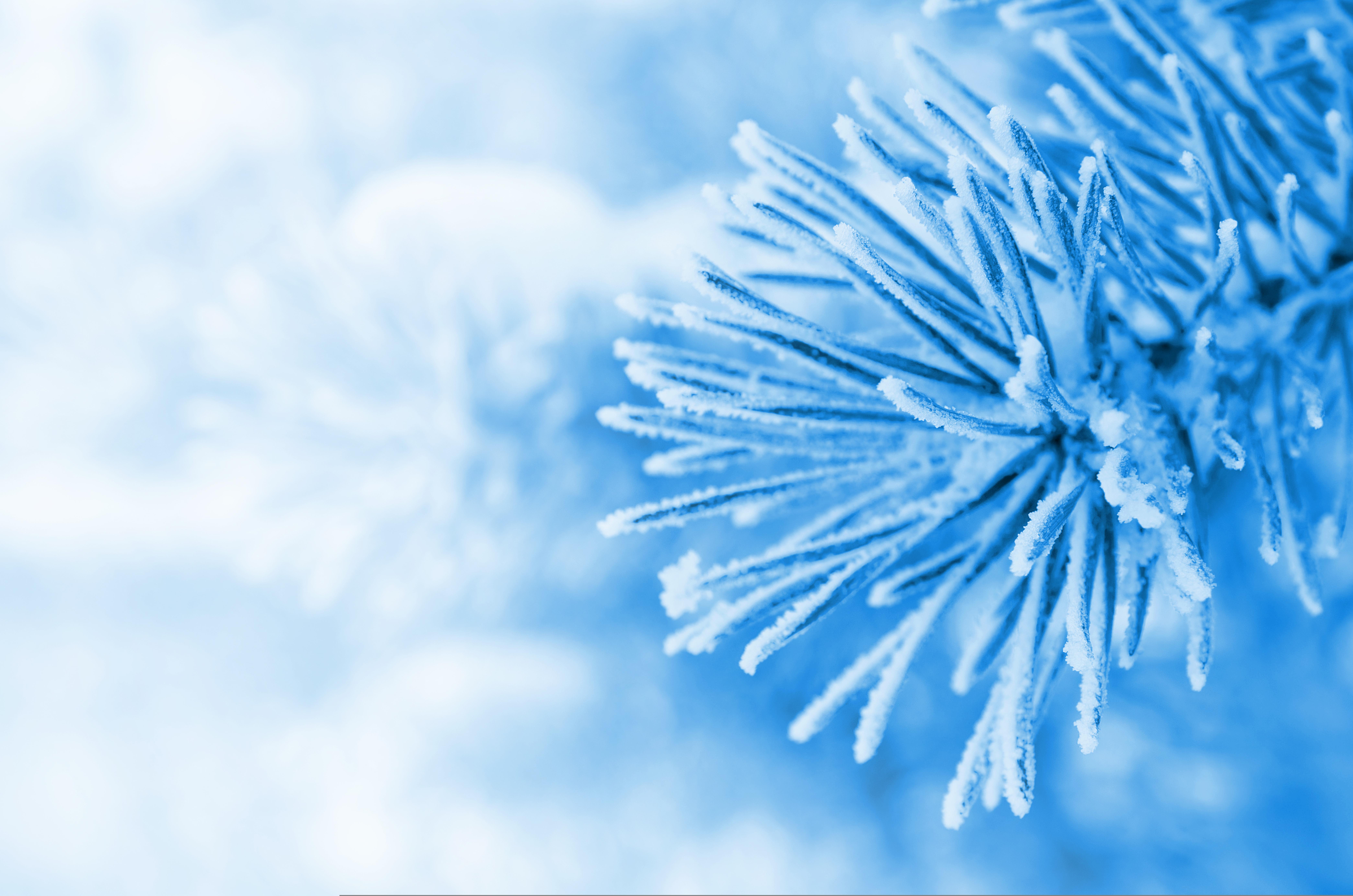 пожарный кран фокус снег зима  № 1511984  скачать