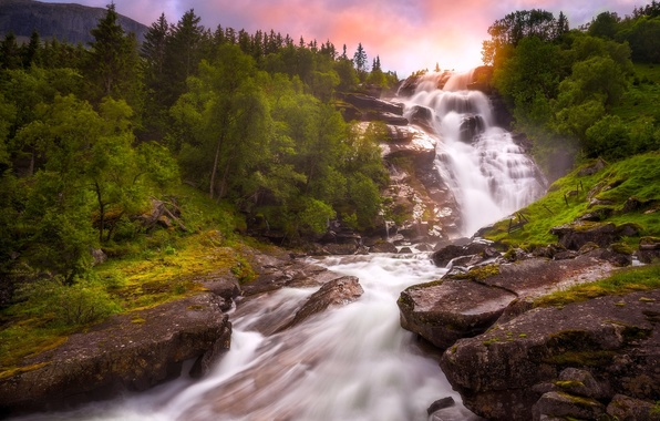 Picture trees, river, waterfall, Norway, Norway