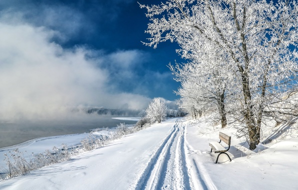 Picture winter, snow, trees, lake, pond, Park, slope, bench