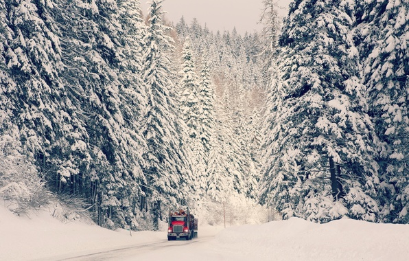 Picture winter, road, machine, forest, snow