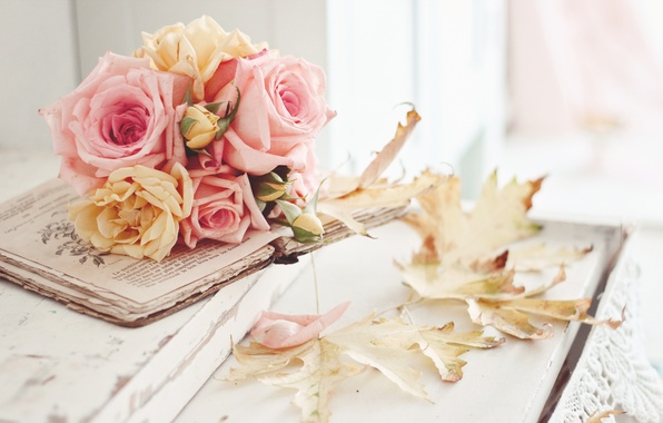Picture autumn, leaves, flowers, roses, still life