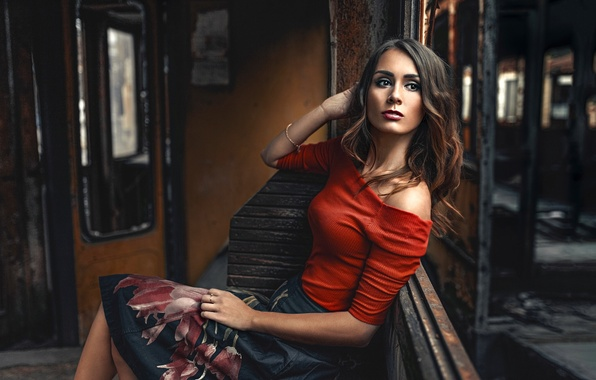 Picture girl, pose, style, mood, model, old wagon