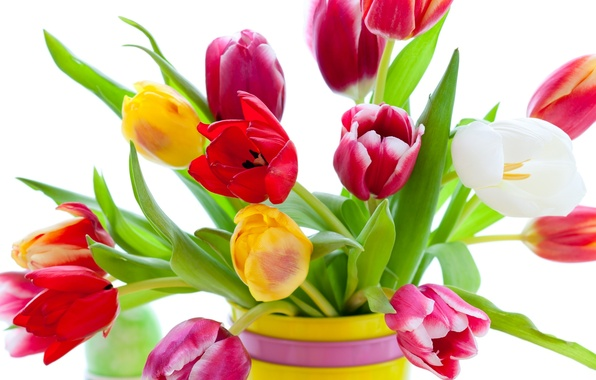 Picture flowers, bright, beauty, bouquet, petals, tulips, red, vase, red, pink, white, white, colorful, yellow, pink, …