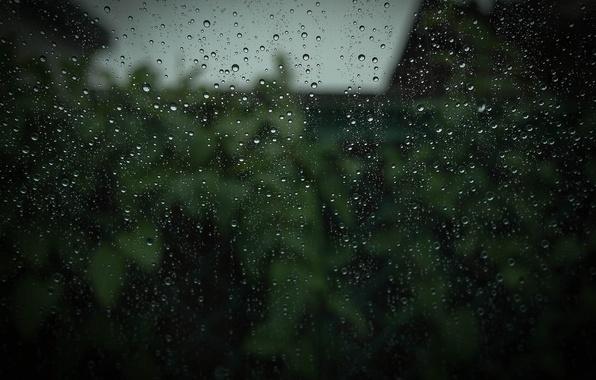 Picture glass, drops, macro, rain