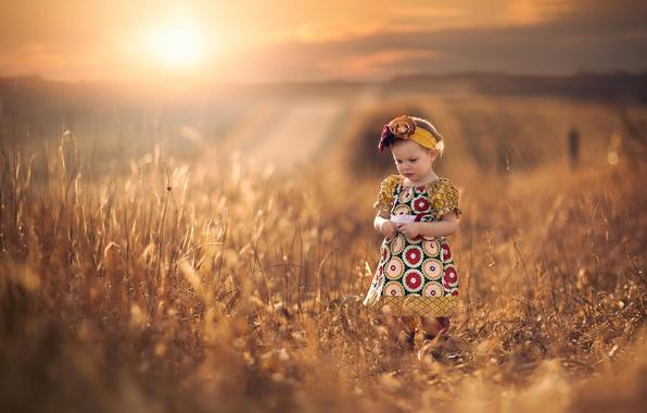 Picture field, the sun, dal, dress, space, girl, bokeh