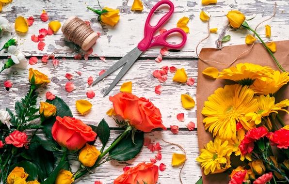 Picture roses, petals, thread, scissors, gerbera, clove
