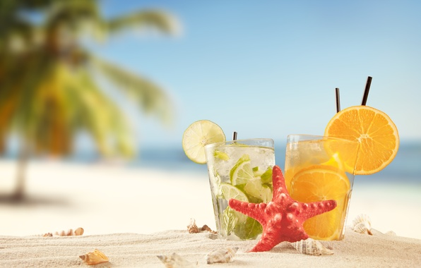 Picture sand, sea, beach, summer, the sun, stay, orange, lime, shell, summer, beach, cocktails, drink, vacation, …
