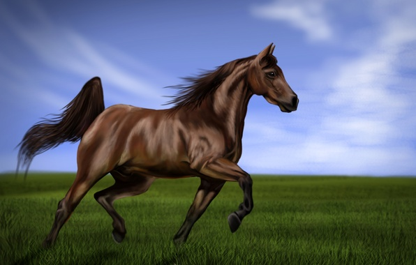 Picture the sky, grass, horse, shadow, art, mane, tail, painting, green, jump