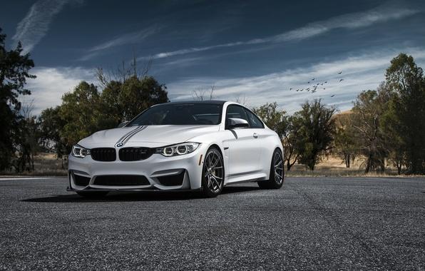 Picture car, white, vorsteiner, BMW M4