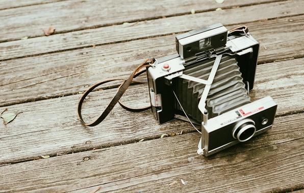 Photo wallpaper camera, wood, polaroid