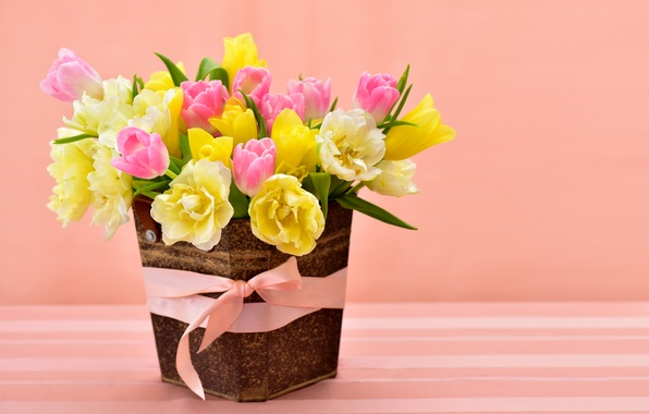 Picture spring, yellow, colorful, tulips, pink, bow, March 8, flowers, beautiful, Spring, Tulips