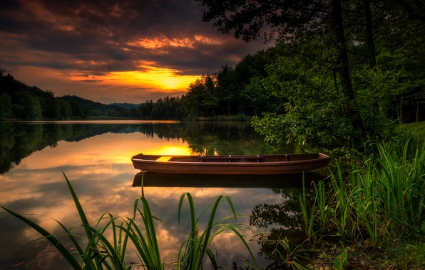 Picture forest, the sky, clouds, trees, sunset, river, the reeds, shore, boat, glow, the bushes