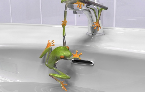 Picture crane, sink, Frogs