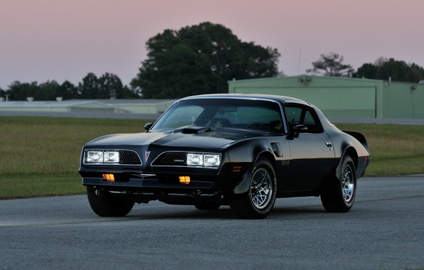Picture Pontiac, Pontiac, Firebird, 1978, Trans Am, WS6, T-Top, Firebird.