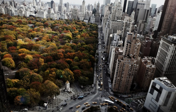 Picture city, USA, sky, cars, trees, new york, clouds, amazing, steet