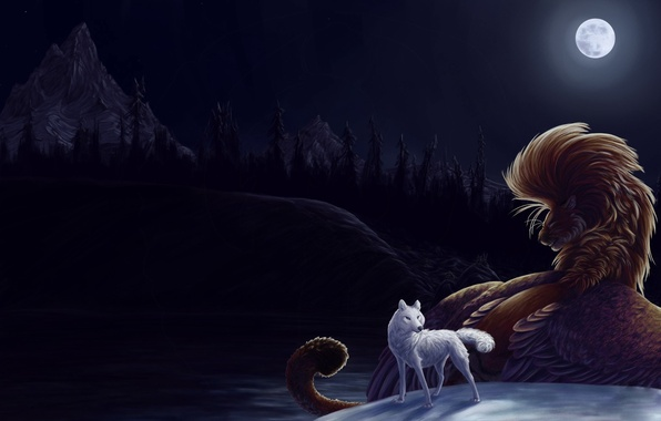 Picture night, the moon, Wolf