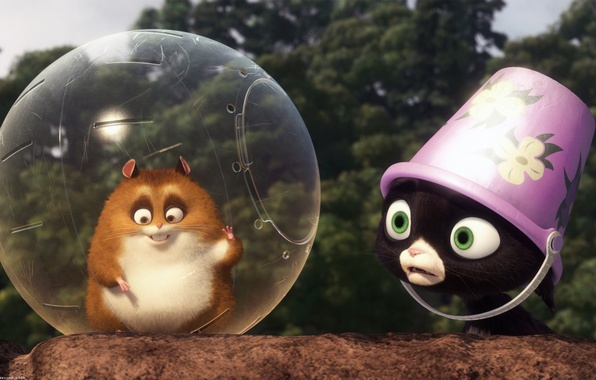 Picture cat, cartoon, hamster