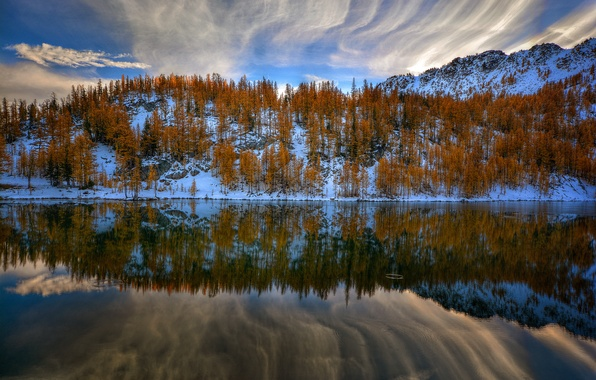Picture the sky, water, clouds, reflection, trees, nature, lake, river
